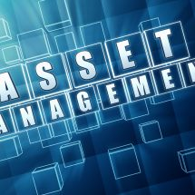 ASSET MANAGEMENT ANALYST