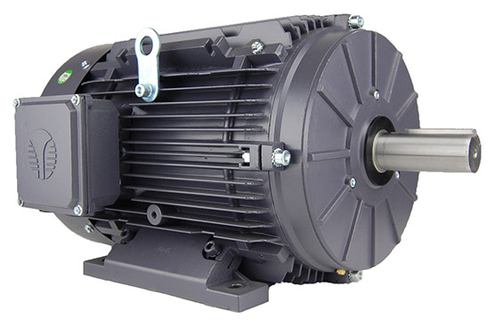 Need an Electric Motor?